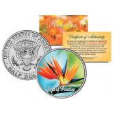 BIRD OF PARADISE FLOWER JFK Kennedy Half Dollar U.S. Colorized Coin
