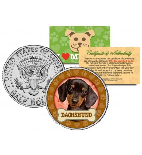 DACHSHUND Dog JFK Kennedy Half Dollar U.S. Colorized Coin