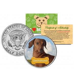 DACHSHUND - Dog - JFK Kennedy Half Dollar U.S. Colorized Coin - Limited Edition