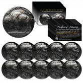 Lot of 10 Various Full Date BUFFALO NICKELS US Coins - BLACK RUTHENIUM - Indian Head Nickels