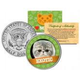 EXOTIC Cat JFK Kennedy Half Dollar U.S. Colorized Coin