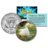 DOMESTICATED DUCK Collectible Birds JFK Kennedy Half Dollar Colorized US Coin