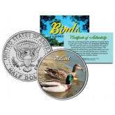 MALLARD Collectible Birds JFK Kennedy Half Dollar Colorized US Coin WILD DUCK