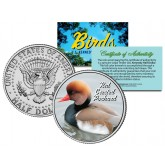 RED CRESTED POCHARD Collectible Birds JFK Kennedy Half Dollar Colorized U.S. Coin DUCK