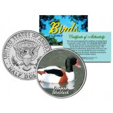 COMMON SHELDUCK Collectible Birds JFK Kennedy Half Dollar Colorized US Coin