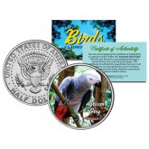 AFRICAN GREY Collectible Birds JFK Kennedy Half Dollar Colorized US Coin PARROT with Bright Red Tail