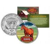 HORSE Collectible Farm Animals JFK Kennedy Half Dollar U.S. Colorized Coin