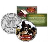 SHEEPDOG Collectible Farm Animals JFK Kennedy Half Dollar US Colorized Coin